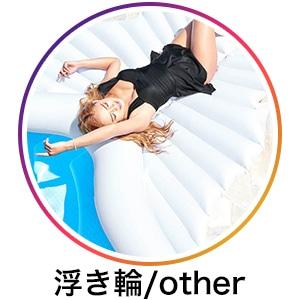 浮き輪/other